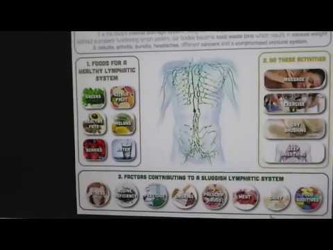 """A Stagnated Lymphatic System Causes Dis-Ease Symptoms (Western Medicine Cannot """"Cure"""" Dis-Ease)"""