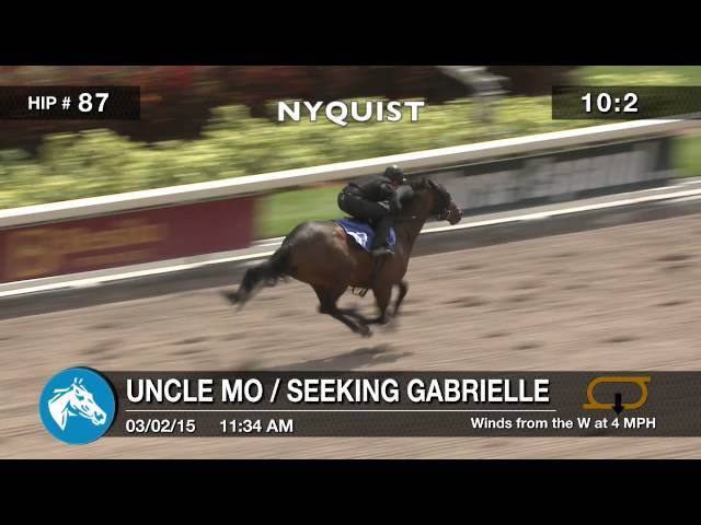 The Florida Sale: NYQUIST (2015)