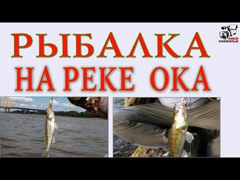 Как мы ловили рыбу на реке Ока. Московская область.