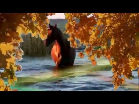 Разменяйте мне осень