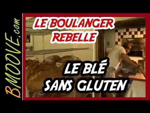 GLUTEN : le boulanger REBELLE qui n'aimait pas le blé moderne !