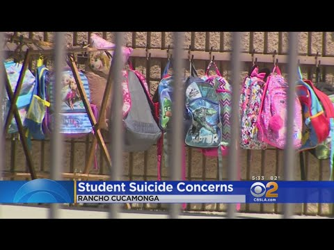 Elementary School Student Among String Of Youth Suicides In