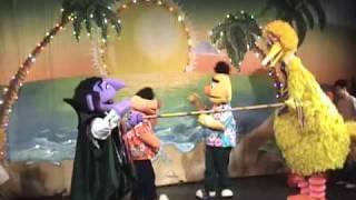 Japanese Big Bird & Elmo Tokyo Sesame Street Theme Park - Slade Walters