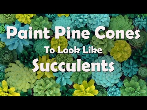 How To Make Painted Pine Cone Succulents Youtube