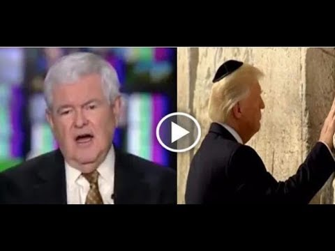 NEWT GINGRICH WENT ON TV AND LEAKED THE DNC