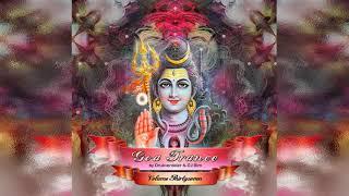 VA - Goa Trance Vol. 37 (Compiled By Drukverdeler & DJ Bim) (Full Compilation)