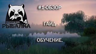 Сом Амурский троф РусскаяРыбалка4 День 118 RussianFishingGame4 Day 118 俄羅斯釣魚4
