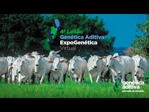 4º LEILÃO GENÉTICA ADITIVA EXPOGENÉTICA 2021