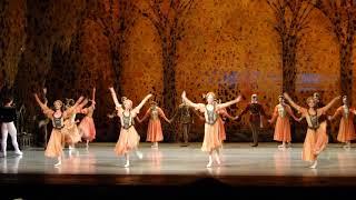 Смотреть видео Вальс из балета П.И.Чайковского