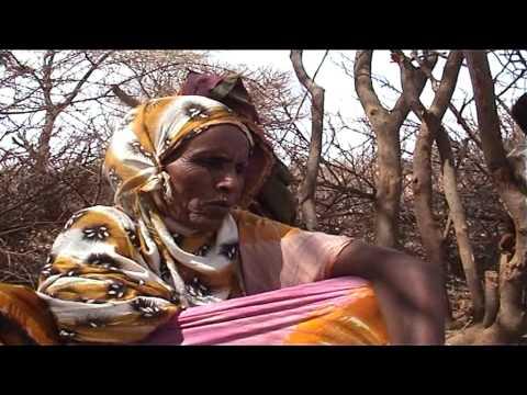 Weriye Abiib Iimaan & Canbaro Nuux Axmed  Widhwidh )