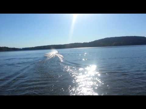 Offshore team enforcer Zenoah powered RC Boat