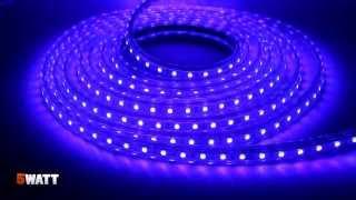 Светодиодная лента RGB 5050-60 220V обзор и спецификация(Цена и наличие: http://5watt.com.ua/index.php?route=product/search&filter_name=5050-60 Светодиодная лента RGB 5050-60 220V Все светодиодные ..., 2014-03-29T09:07:33.000Z)