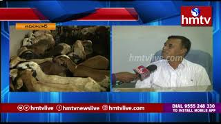 Phase-II Sheep Distribution Postponed in Adilabad : Official JD Suresh Face to Face | hmtv