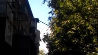 Дед с балкона дома сбивает орехи с дерева,  молдавские приколы