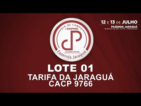 LOTE 01 (CACP 9766)