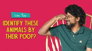 Can You Identify These Animals By Their Poop? | Ok Tested