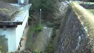 桜の花散る松阪城址を訪れました。その隣に本居宣長記念館と旧宅跡があ...