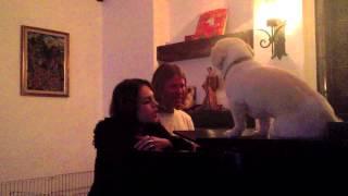 Mike & Liz Sing OK