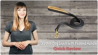 Walking Leather Dog Leash With Padded Handle - Fordogtrainers Review