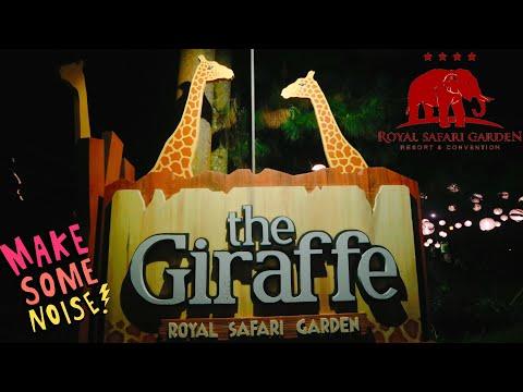 review-royal-safari-garden-|-suasana-malam-hari-giraffe-hotel-|-trevor-tepoi-liburan