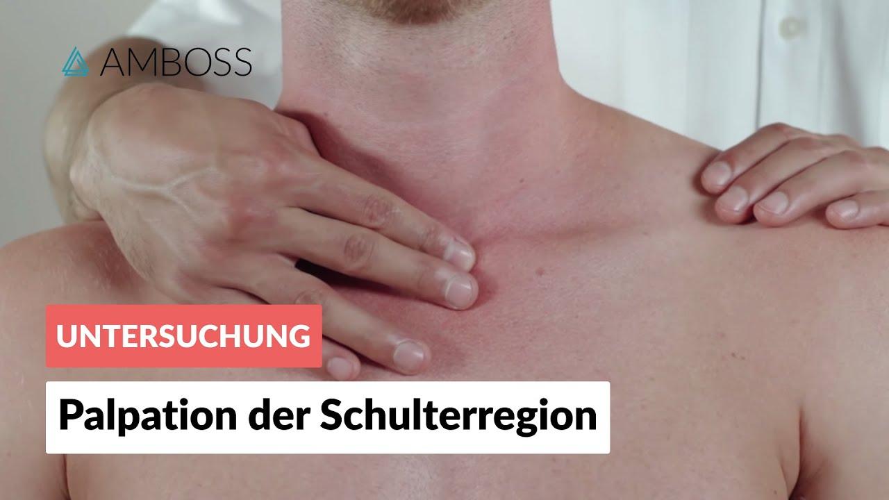 Palpation der Schulterregion - Orthopädie - Klinische Untersuchung ...