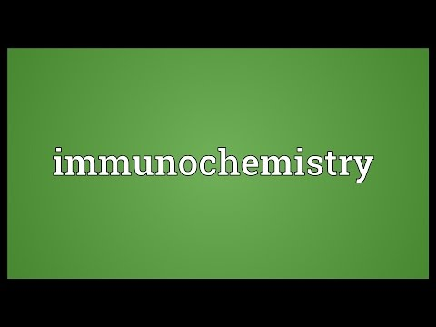 Header of immunochemistry