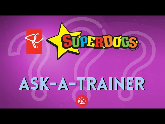 SuperDogs Ask-A-Trainer!