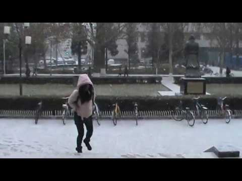 Snowfall ( Beijing Language And Culture University, Beijing , China)