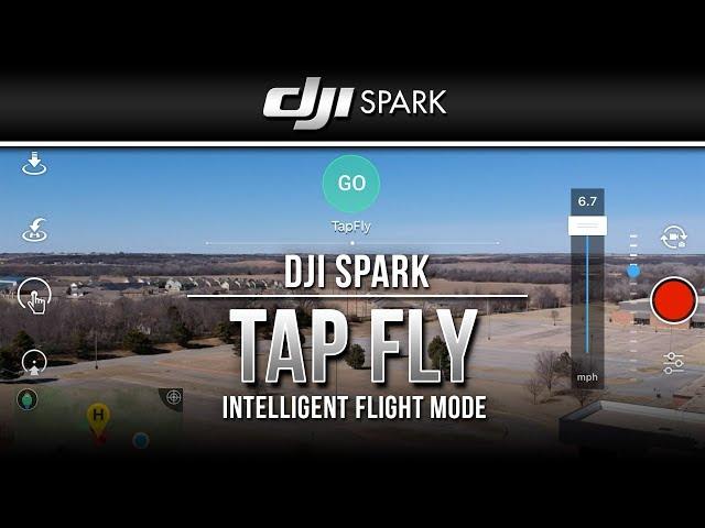 DJI Spark / Tap Fly (Tutorial)