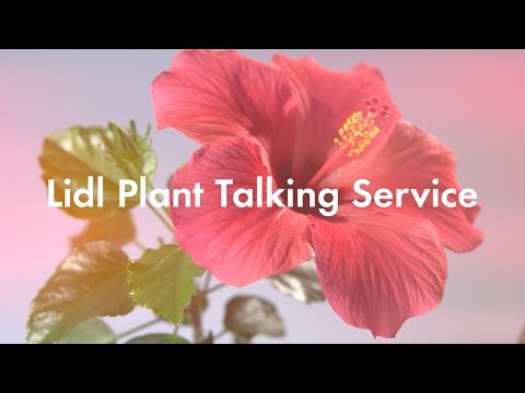 Lidl Plant Talking Service