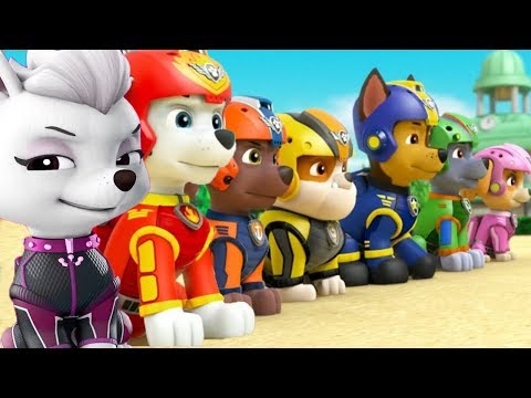 PAW Patrol Mission Paw | New Pups Team...