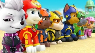 PAW Patrol Mission Paw | New Pups Team Chase, Rubble, Skye Training Day | Nickjr Fun Kids Videos!