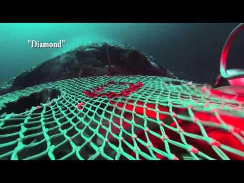 Catch Limitation In Demersal Seine Fishing