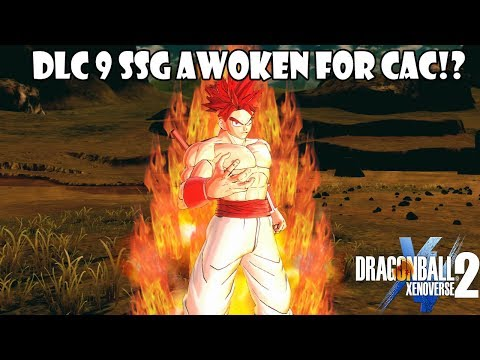 Why Xenoverse 2 DLC 9 Adding SSG Awoken With SSG Vegeta ONLY MAKES SENSE!