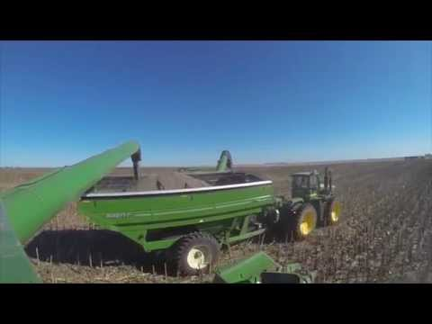2015 Nebraska Sunflower Harvest Raw - GoPro