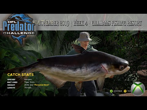 Fishing Sim World Pro Tour ¦ DFL XBOX ¦ Predator Challenge ...