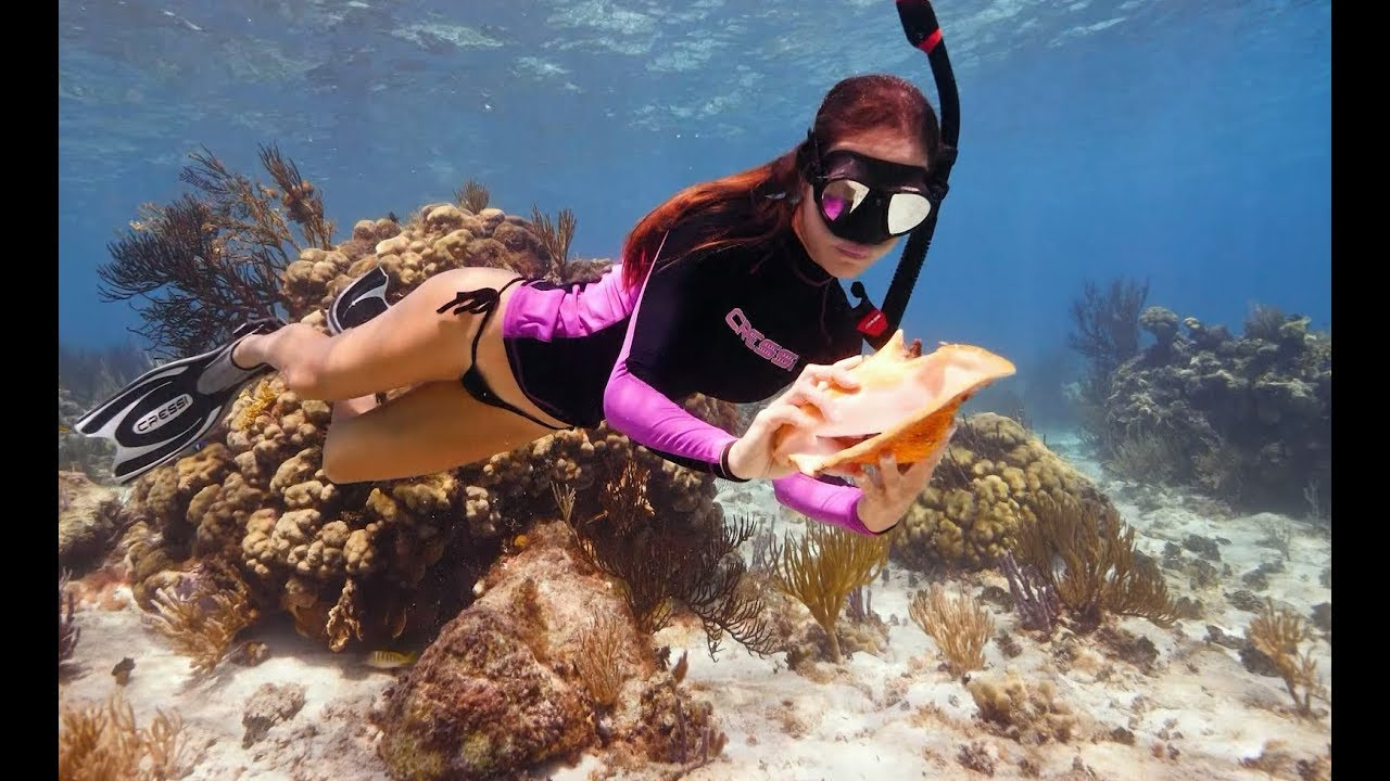 diving-for-conch-in-the-cayman-islands