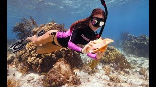 Diving for CONCH in the Cayman Islands