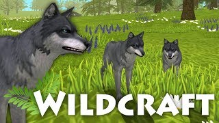 A Mate for Our Wolf Pack!!  WildCraft - A Wolf&#39s Journey  #3