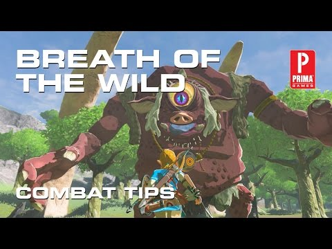 Zelda: Breath of the Wild Combat Tips - Weapons, Perfect Dodge, and Sneakstrike
