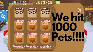 Roblox game RPG World... 1st person to have 1000 pets!?!?!?!?