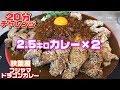 【大食い】2.5キロ20分チャレンジ!秋葉原フジヤマドラゴンカレー【三宅智子】