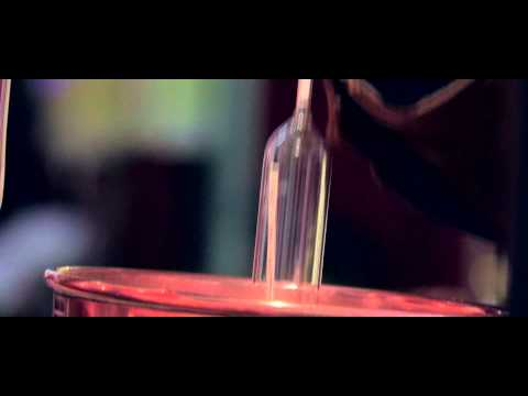 Hawkins Distribution Cognac R.Delisle / Richard Delisle