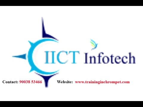 Successful Journey Of IICT   No.1 Software IT Training Institute In Chennai By MNC Experts