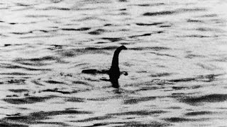 Loch Ness Monster 50: fascinating facts