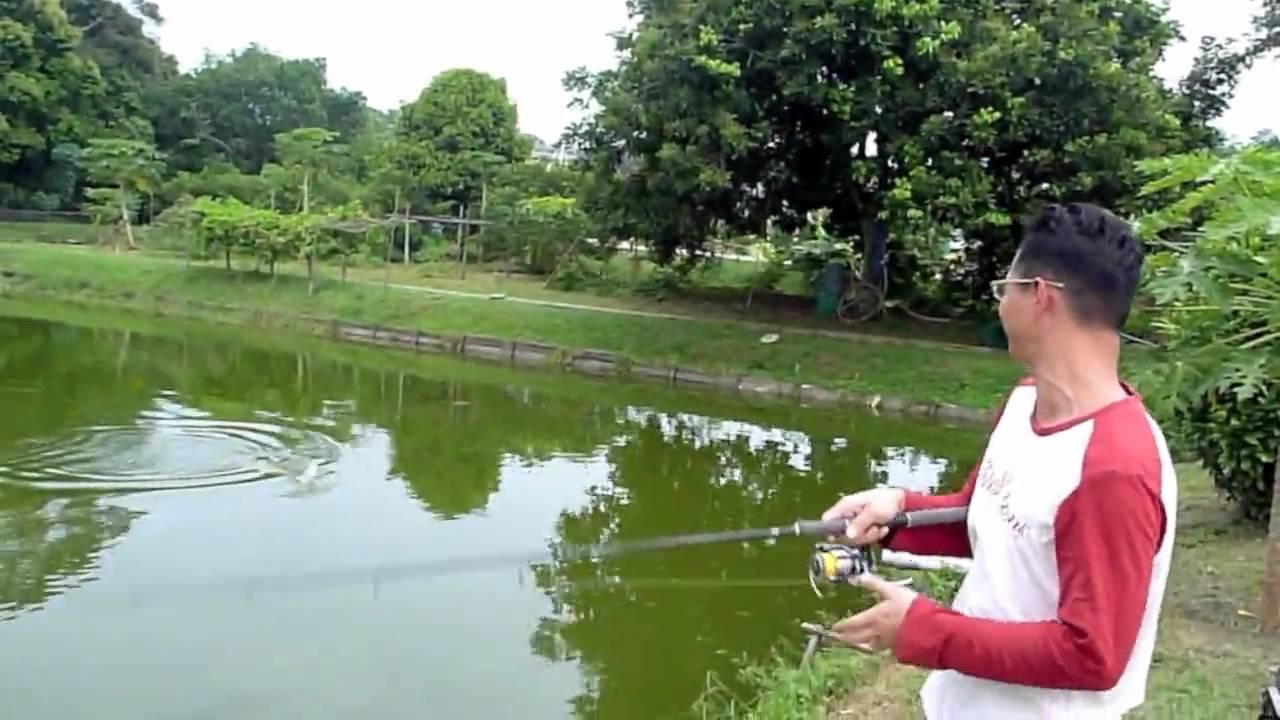 Singapore pond fishing location