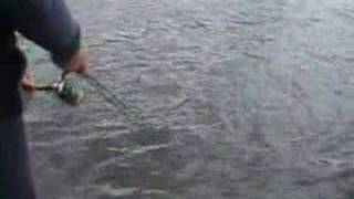 Twitching - Russian Fishing Style Рыбалка - твичинг