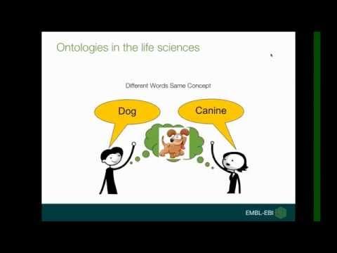 Ontology Lookup Service (OLS)