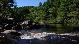 Wild SideTV-The Conasauga River