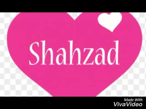 malik shahzad